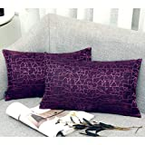Redland ArtThrow Pillow Covers Cotton Linen Embroidery Stripe Sofa Decorative Cushion Pillow Cases for Home Decor 2-Pack, 12 X 20 Inch (Purple)