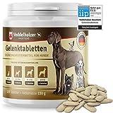 Veddelholzer DER Sieger 10/2020* Hunde Gelenktabletten | Maximale Wirkstoff-Dosis mit Grünlippmuschel...