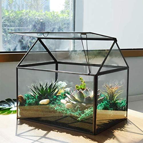 Large Glass Plant Terrarium House Succulent Glass Terrarium Kit with Lip Glass Greenhouse Terrarium product image