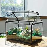 Large Glass Plant Terrarium – House Succulent Glass Terrarium Kit with Lip Glass Greenhouse Terrarium for Plant (Black 1)
