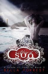 Cover of A Blaze of Sun