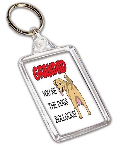 Funny Rude ukgiftstoreonline–Portachiavi–Compleanno festa del papà–Christmas–You' re The Dogs Bollocks.