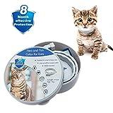 KOOLTAIL Cat Flea and Tick Collar - 8 Months Protection Anti Flea Collars