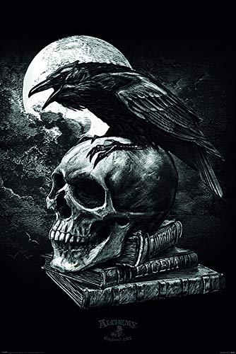Alchemy Poster Poe's Raven (61cm x 91,5cm) + Ü-Poster