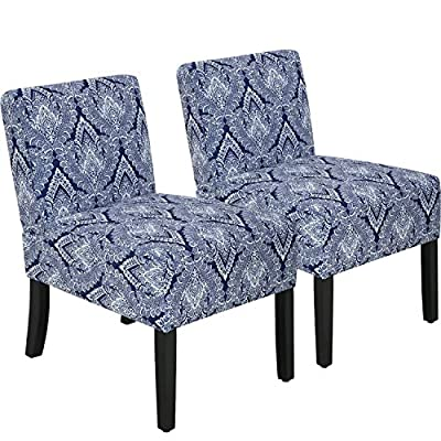 Modern Accent Chair Dining Chair Set of 2