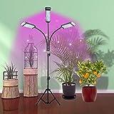 ZQH Luces De Cultivo LED con Soporte, 108 LED 3 Cabezas 80W Planta De Espectro Completo Luz Regulable Luz De Planta De Planta De Tiempo para Semillas con Trípode Ajustable