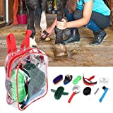 chengong Horse Cleaning Tool, Horse Brush Set, Horse Grooming Care Horse Cleaning Tool Kit Portable Horse Grooming Care Kit for Horse Brush Horse Care Horse