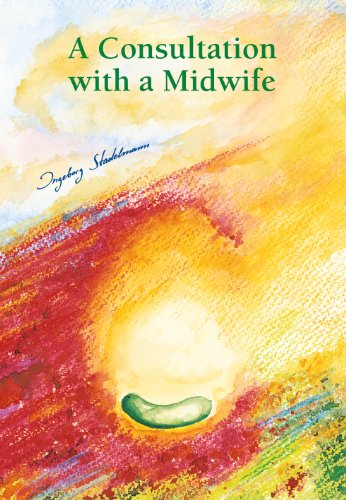 A Consultation with a Midwife (English Edition)