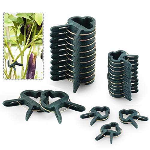 FORMIZON 80PCS Clips de Support Réglable pour Plantes Caches de Tuteurs de Jardin Structure de Support Attache pour Jardin, Vigne, Légumes, Tomates(40 Grands Clips et 40 Petits Clips)