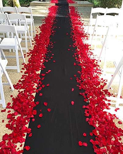 24 in × 15 ft Black Carpet Wedding Aisle Runner Bridal Floor Runner for Wedding Party Special Event Decorations