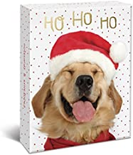 Graphique Assorted Puppy Christmas Cards — 20 Christmas Puppies in 4 Designs & Embellished with Gold Foil and Glitter, Holiday Cards Includes Matching Envelopes and Storage Box, 4.25
