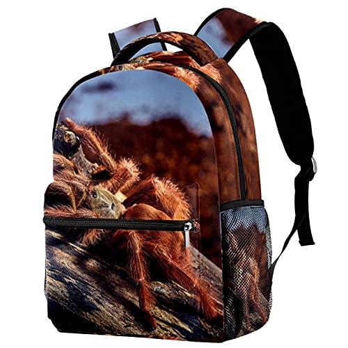 Kinder Rucksack Schultasche Leichte Kinder Grundschule Tasche Große Kapazität Vorschulkindergarten Buch Reisetasche Mexikanische Rotknie-Vogelspinne 0