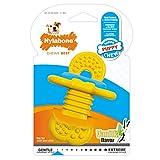 Nylabone Juguete masticable para la higiene Dental de Cachorros en Etapa de dentición, Juguete calmante masticable de Goma, Sabor a Vainilla, para Cachorros de hasta 11 Kilos 65 g