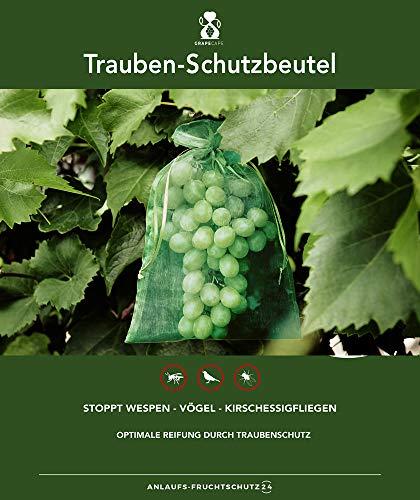 30 bolsas protectoras para las uvas, tamaño 23x15 cm, color: verde oscuro, para la protección contra las avispas, pájaros, moscas de la cereza e insectos. Bolsas protectoras para frutas, organza