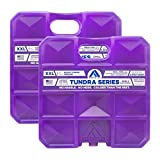 Arctic Ice Tundra Series Long Lasting Reusable Ice Pack for Coolers, Lunch Boxes, Camping, Fishing and More (2-Pack) (Large 2.5 LB)