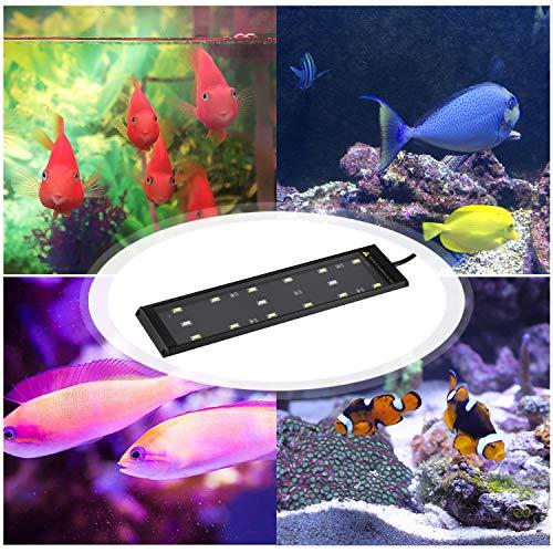 Best Design 15 Led Blue White Aquarium Light Lighting 6w Aquatic Plant Grow, Clamp Aquarium Light - Led Aquarium Light, Led Aquarium Lighting, Led Marine Aquarium Light, Aquarium Light