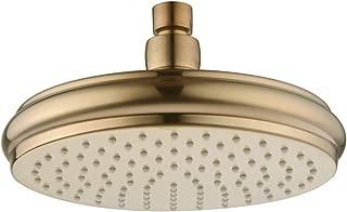 Best champagne bronze shower head Reviews