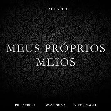 Meus Próprios Meios (Cover)