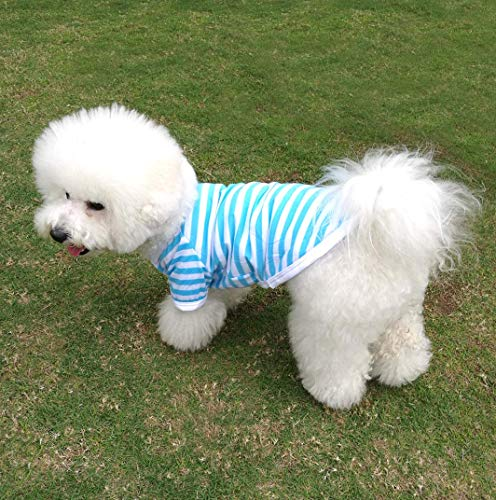 QiCheng&LYS Pet Clothes Dog Striped T-Shirt, Cute Soft Breathable Cotton Vest Short Sleeves Summer Puppy Apparel for Small Medium Dogs Boy and Girl (L, Blue)