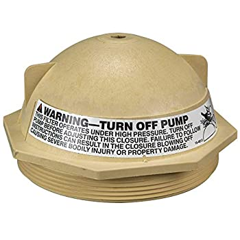 Pentair 154559 6-Inch V Thread Closure Replacement for Triton II Pool and Spa Fiberglass Sand Filter