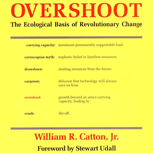 Overshoot audiobook cover art