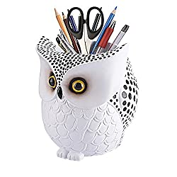 Owl Gifts Guide: Gift Ideas for the Owl Obsessed 3