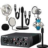 PreSonus AudioBox USB 96 Interface 25 Aniversario + Micrófono Estudio Pro Blue Pack Dublín con Accesorios
