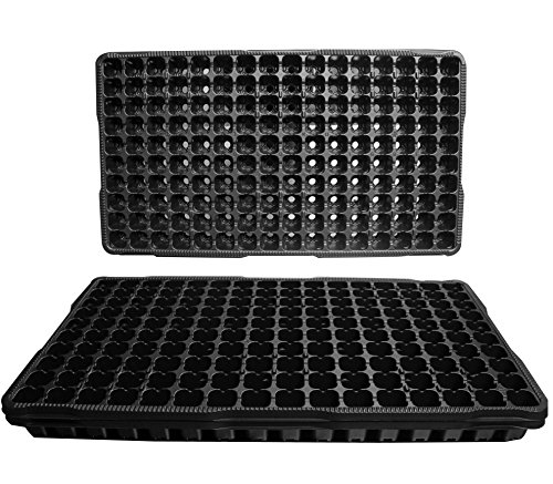 25 bacs en plastique Graine de départ - Chaque plateau comporte 160 cellules ~ cellules sont 1 « Square X 0,875 » Deep. Grands plateaux 160 Cellules de propagation