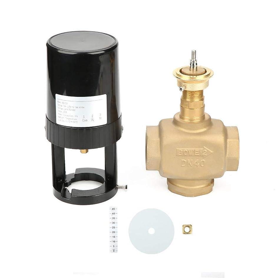 注意過剰カプセルZT-TTHG エアコン暖房水処理液制御用の電気比例積分バルブを調節エレクトリックインテグラル?バルブ、DN40 2ウェイ