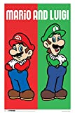Pyramid America Mario Luigi Video Game Cool Wall Decor Art Print Poster 18x12