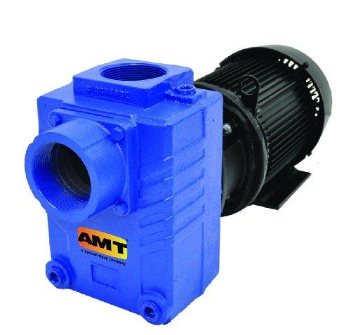 AMT Pump 2874-95 Self-Priming Centrifugal Pump, Cast Iron, 3 HP, 3 Phase, 208-230/460...