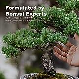 Zoom IMG-2 bonsai food fertilizzante per liquido