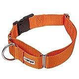 GoGo Pet Products Martingale Gentle Training Collar, X-Large, Orange