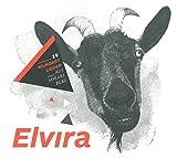 Elvira - 19 Mundartlieder aus Vorarlberg