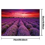 Zoom IMG-2 cqi 1000 pezzi puzzle per