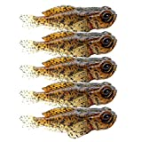 Best Smallmouth Bass Lures - 5 Pack Fishing Lure for Bass Lifelike Silicone Review