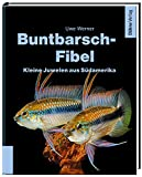 *Buntbarsch-Fibel Südamerika: Kleine Juwelen aus Südamerika