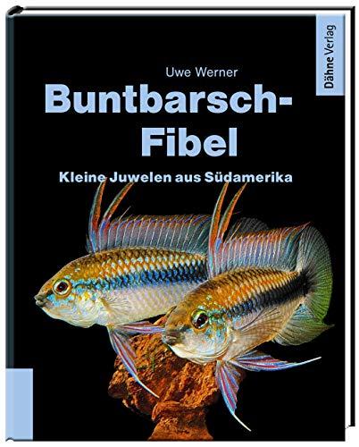 Buntbarsch-Fibel Südamerika: Kleine Juwelen aus Südamerika