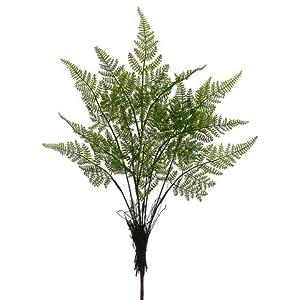 20″ Mini Lace Fern Bush Green (Pack of 24)