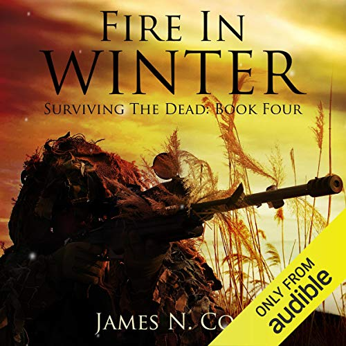 Fire in Winter cover art