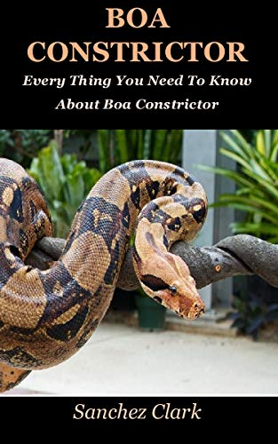 Boa Constrictor: Every Thing You Need To Know About Boa Constrictor (English Edition)
