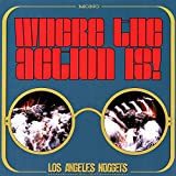 Various Artists -Where The Action Is! Los Angeles Nuggets Highlights (2 LP-Vinilo)