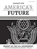 A Budget for America's Future : Budget of the United States Government, Fiscal Year 2021