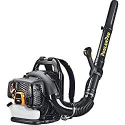 Poulan Pro 2-Cycle Gas Backpack Leaf Blower