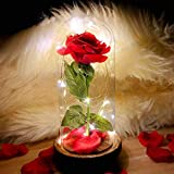2021 Beauty and The Beast Rose,Enchanted Red Silk Rose in Glass Dome with LED Light, Romantic Rose Kit, for Best Gifts Valentine's Day & Girlfriend & & Wedding Anniversary & Birthday