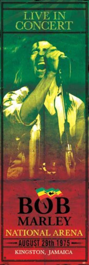 Pyramid International Bob Marley Concert Giant Cool Wall Decor Art Print Poster 21x62