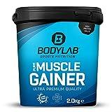 Bodylab24 Pure Muscle Gainer Haselnuss-Kakao 2kg, je 100g 33g natürliche Kohlenhydrate, 40g Protein...