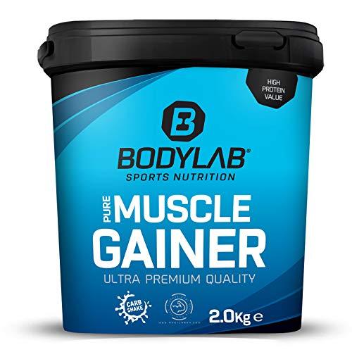 Bodylab24 Pure Muscle Gainer Vanille 2000g, je 100g 33g natürliche Kohlenhydrate, 40g Protein und 12g Fett, angereichert mit Kreatinmonohydrat, perfekter Weight Gainer Shake für den Masseaufbau