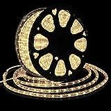 Forever Speed 30M Tubo de LED Manguera LED Luces de Tira de Manguera Exterior e Interior Blanco...