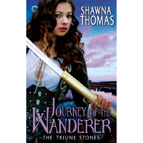 Journey of the Wanderer audiobook cover art